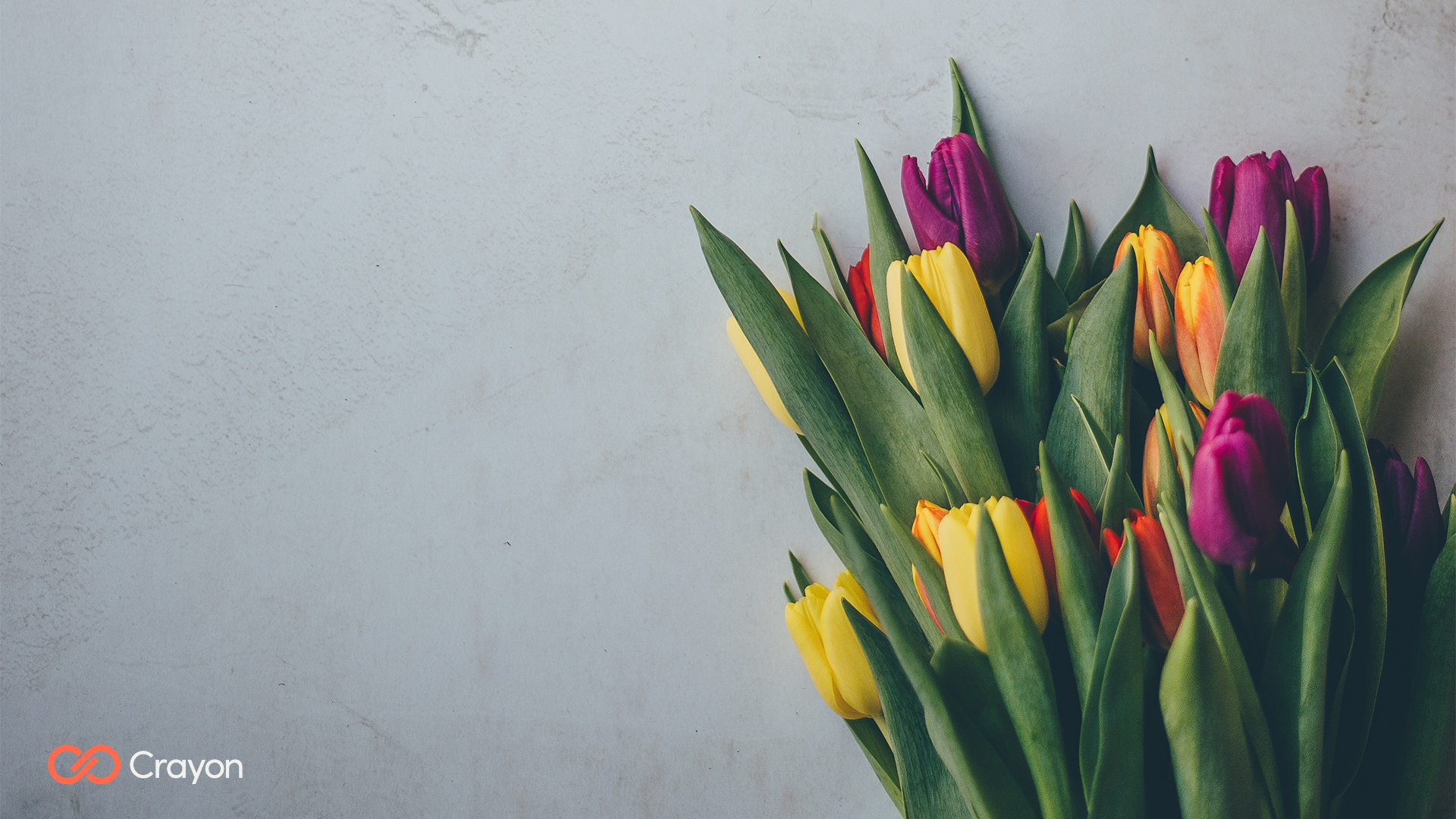 https://www.crayon.com/globalassets/us/seasonal-backgrounds/spring-2021/microsoft-teams-background-tulips.png?